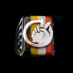 Bague Amerindienne Symbole Indien Indian Movement